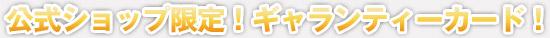 ダグダートオリジナルシルバーアクセサリー公式ショップ特典ギャランティーカードを発行します。